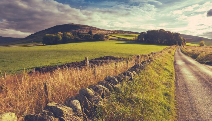 Country Road Or Lane And Dry Stone Wall Through Scottish Rural Lanscape At Dusk