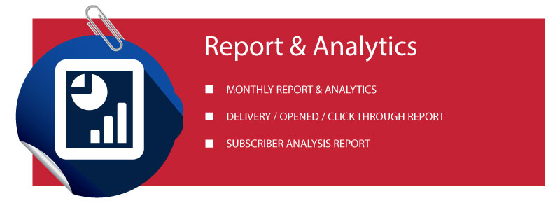 email marketing report and analytics really pro